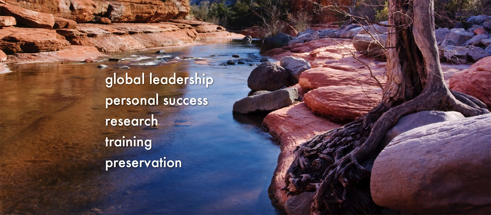 Global Leadership Slider